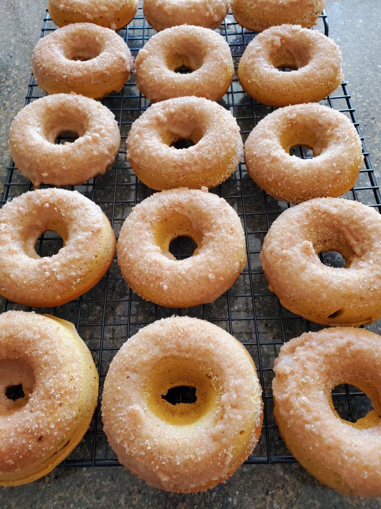 dozen sugared pimpkin doughnuts